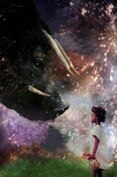 Beasts of the Southern Wild movie poster