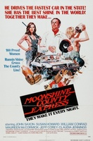Moonshine County Express movie poster